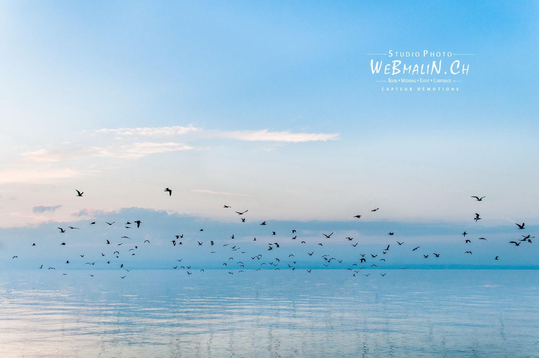 Portfolio - Paysage - Lac Leman Evian Zen
